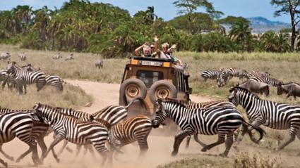 Travel Forum | Overseas Adventure Travel