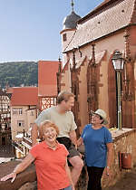View castle ruins and fairy tale sights while touring Wertheim