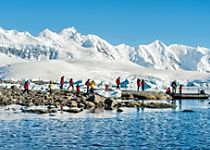 View Antarctica's stunning landscape and wildlife during zodiac tours