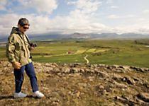 Explore Iceland's rolling green landscape