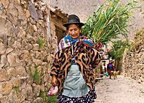 Explore Peruvian villages during a guided tour