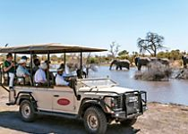 Discover African wildlife on a safari in Chobe National Park